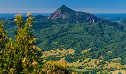 Wollumbin (Mount Warning)